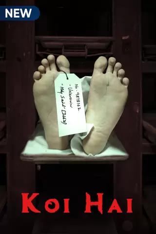 Koi Hai (2021) Hindi S01 Complete WEB-DL x264 AAC